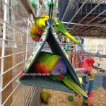 Bird Bed, Bunks, Huts & Tents
