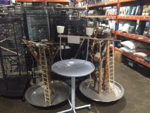Large Parrot Stands