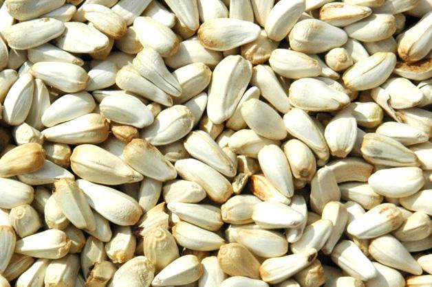 Avigrain Safflower Seed
