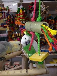 Luffa Bird Toys