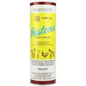 Inca Pestene Powder