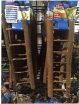 Natural Bird Ladders
